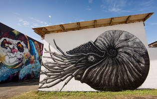 streets-pow-wow-final-walls-vol-2