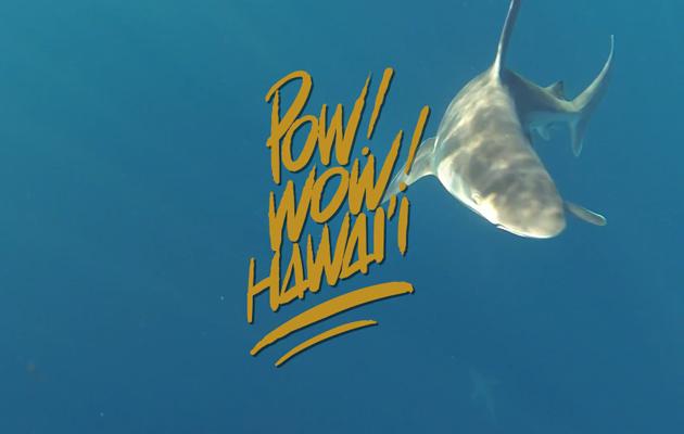 powwow-feature