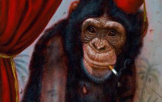 turf-one-smoking-chimp-12x24-1xrun-news-th